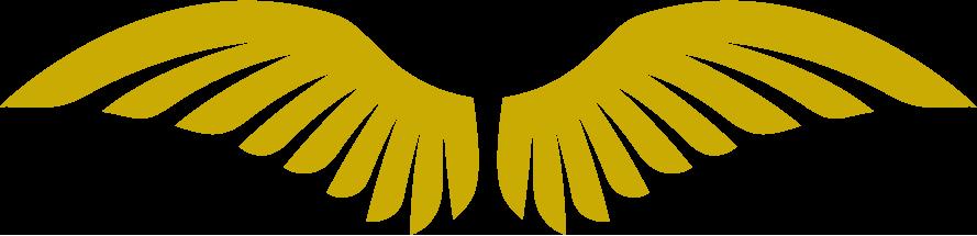 לוגו איקרוס